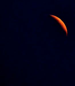 Blood Moon 6:09 a.m. 4/4/2015 Photo - Clarence Holm