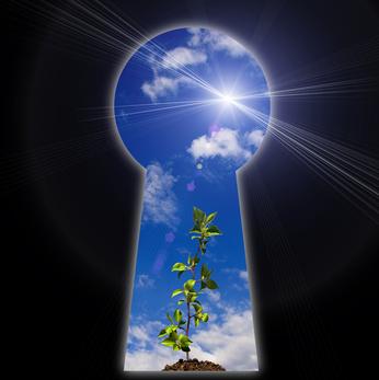 keyhole_blue_sky_sun_plant.jpg